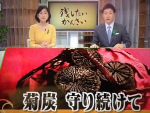 NHK菊炭01