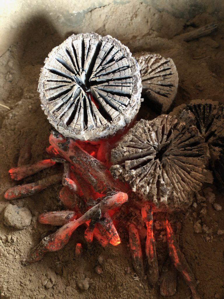1月19日朝7時30分からのNHKウイークエンド関西 西日本の旅で能勢菊炭が紹介されます。
