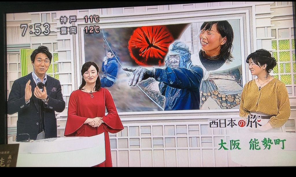 NHKさんありがとうございました。